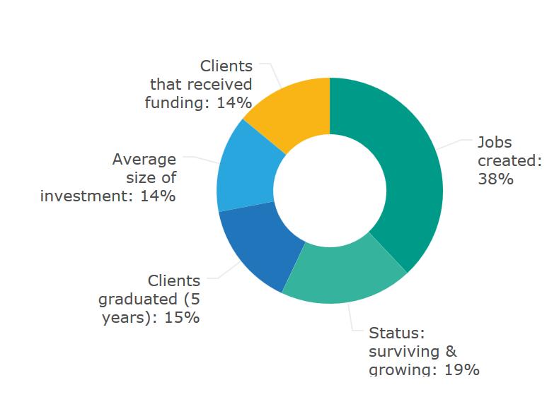 TOP 5 KPI's Incubator Managers